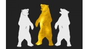 Gold Bear Removals